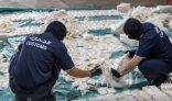إحباط تهريب 8.7 مليون حبة كبتاجون عبر ميناء جدة