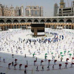 38 ألف أضحية استقبلتها مسالخ العاصمة في أول أيام العيد
